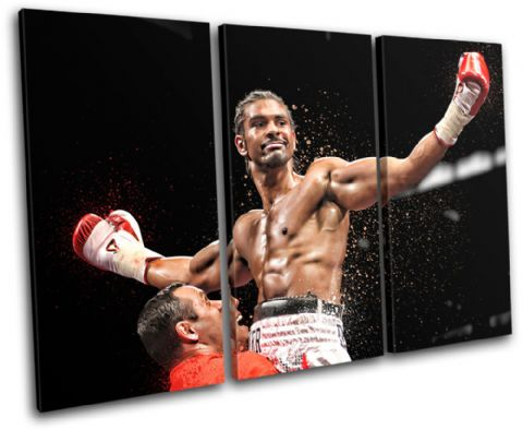 Boxing David Haye Sports - 13-1920(00B)-TR32-LO